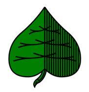 grün - doppeldeutsche karten